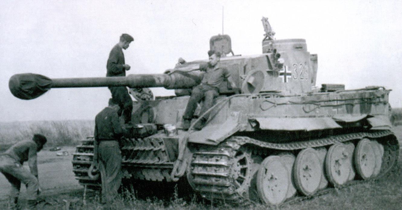 11 ремонт тигра