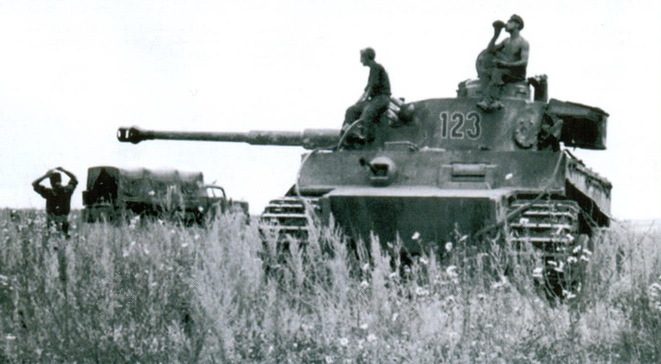 13 тигр №123