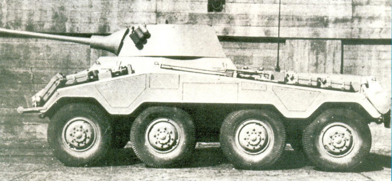 14 Puma