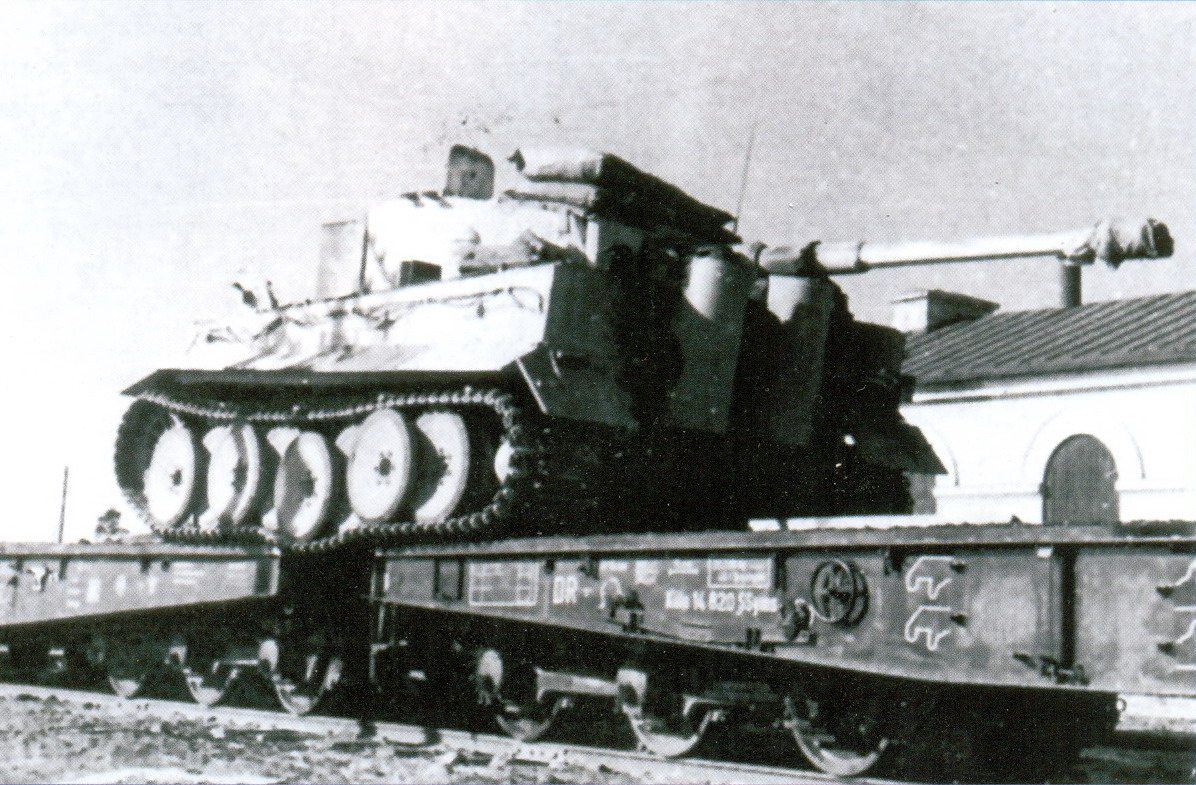 2 Тигр на платформе SSYMS