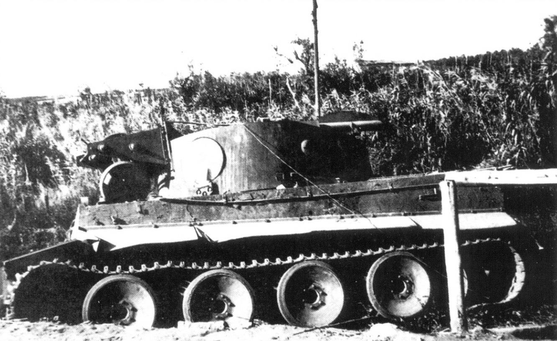 33 repair_tiger