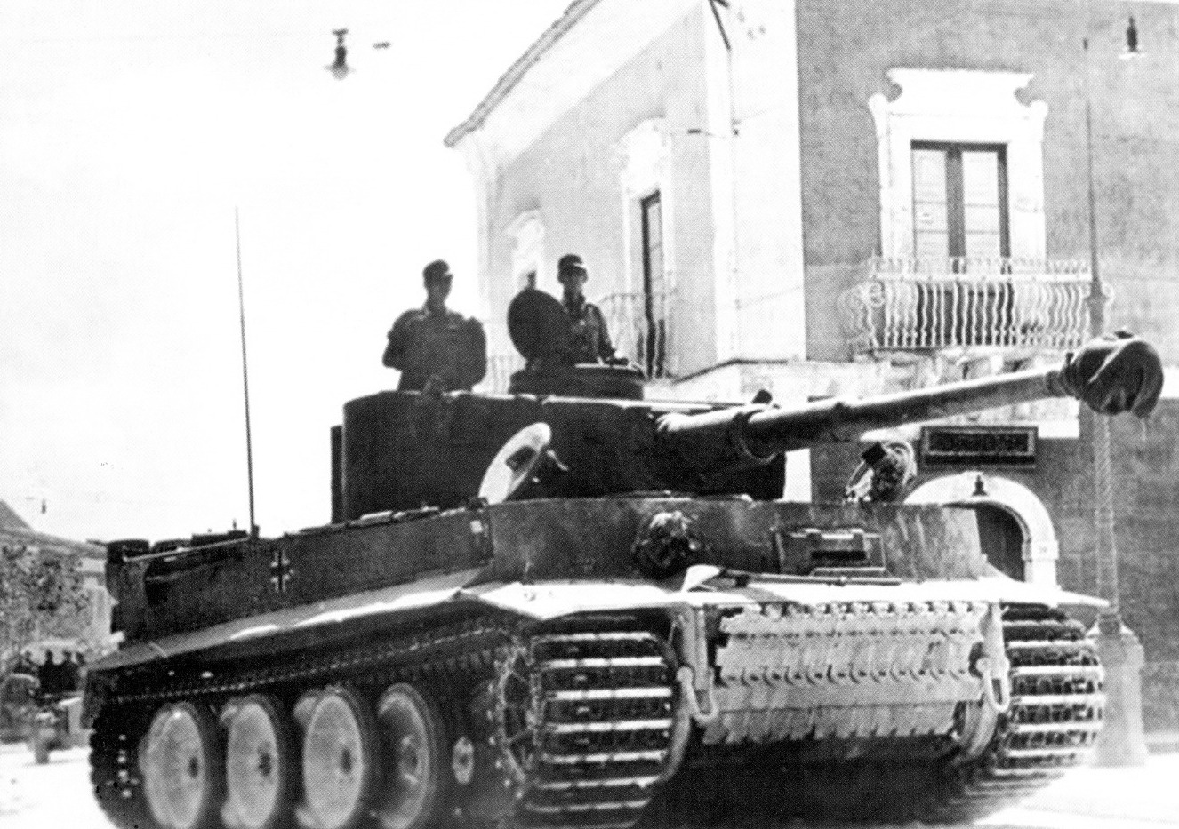 44 tiger_in_Sicilii