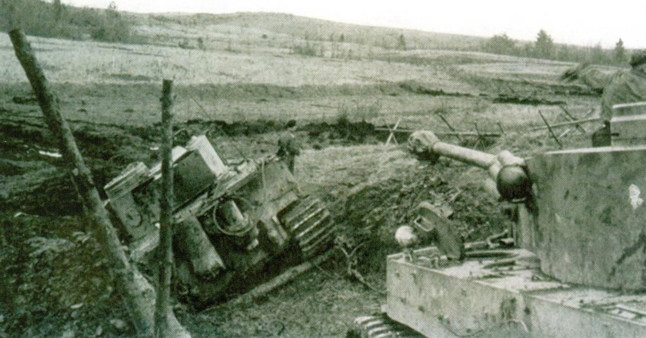 5 Тигр провалился в яму