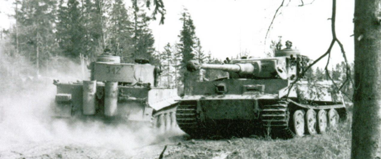 7 Два танка «Тигр»
