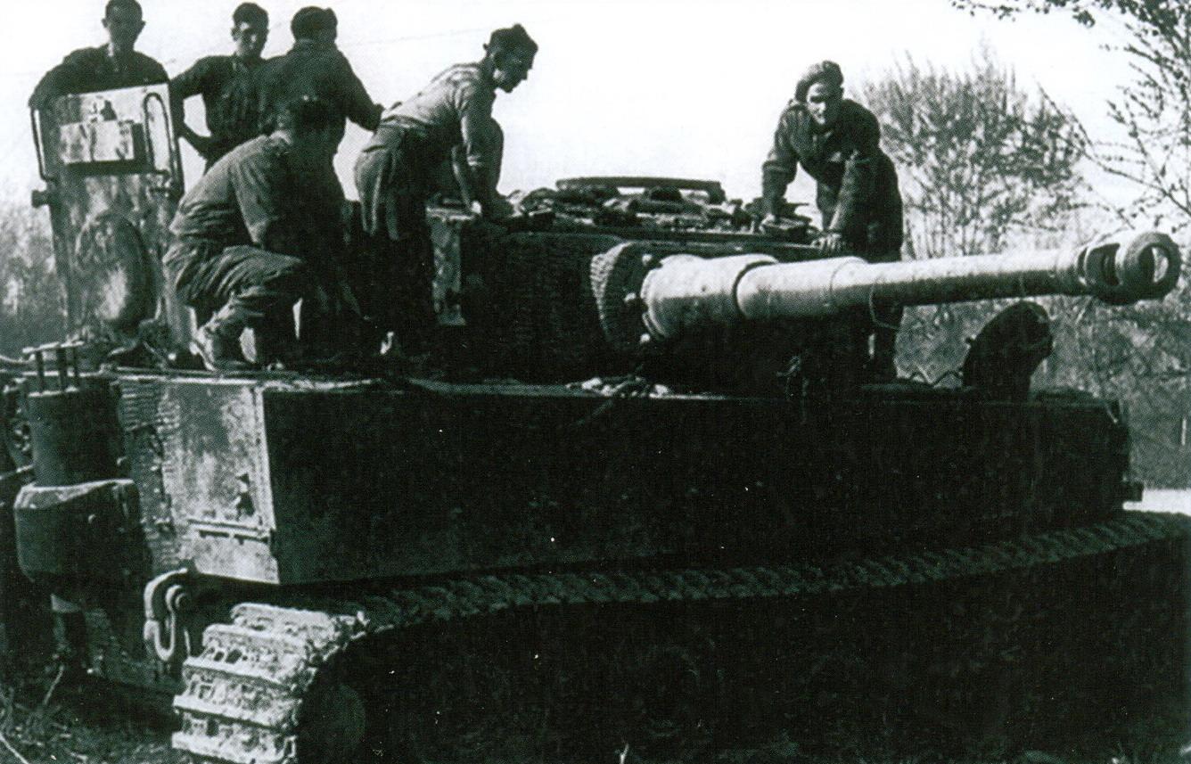 8 Panzer VI